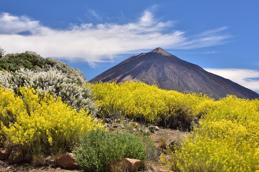 Volcan du Teide des îles Canaries en Espagne