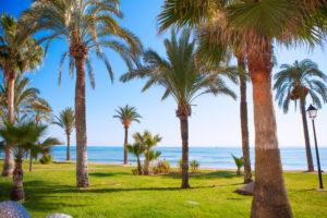 Jardin méditerranéen à Oropesa sur la Costa Azahar en Espagne