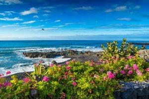 Plage îles Canaries en Espagne